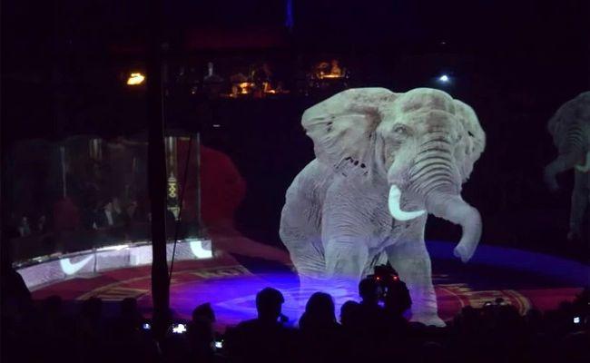 holograma elefante circo
